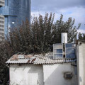 002105-old-vs-new-in-neve-tzedek