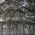 011409-crystal-palace-retiro-park-madrid