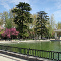 011709-retiro-park-in-madrid2