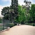 012009-retiro-park-path-in-madrid