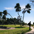 027209-golf-field-in-malaga