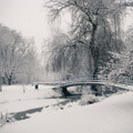 053410-snowy-park-bridge-in-holland