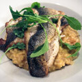 083215-sea-bass-on-pumpkin-risotto