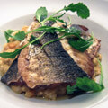083315-sea-bass-on-pumpkin-risotto2